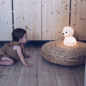 米菲兔,MIFFY,彌月禮,燈,夜燈,新生兒禮,寶寶,嬰兒夜燈,米非兔,米菲兔,落地燈,荷蘭,獅子燈,獅子座,boris,熊熊,狗狗,snuffy,mr maria